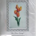 Rembrandt tulips - $16.00